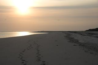 Ste Catherine beach